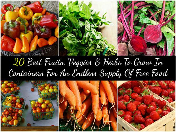 learn how to grow fruits and vegetables