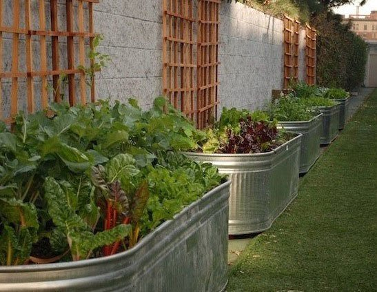 Garden Bed Ideas 20 Unique & Fun Raised Garden Bed Ideas