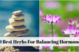 Best Natural Remedies For Sibo