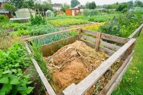 9 Things Everyone Thinks You Can't Compost, But You Can!