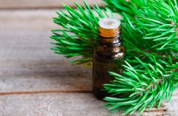 10 Reasons You Need A Bottle Of Pine Essential Oil In Your Life