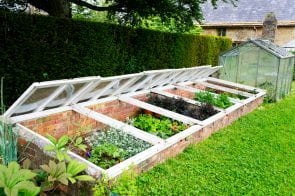 3 Reasons You Should Build A Cold Frame + DIY Ideas