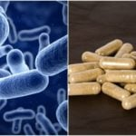 How To Choose The Best Probiotic Supplement To Fix Every Condition