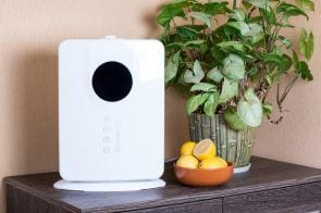 7 Reasons You Need An Air Purifier + Top 3 Reviewed