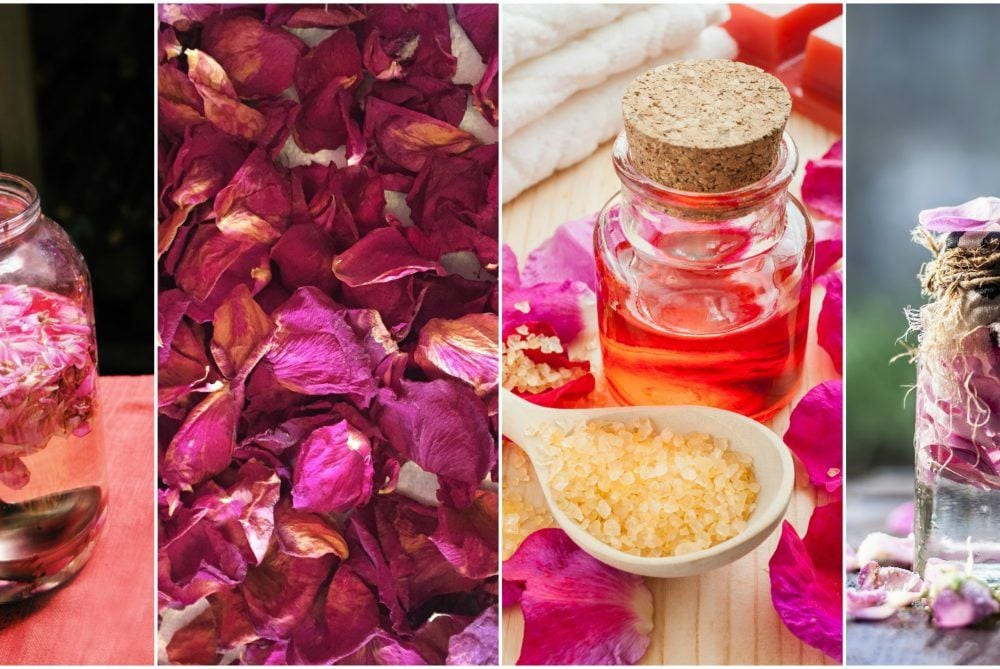 10 Beautiful Ways To Use Rose Petals