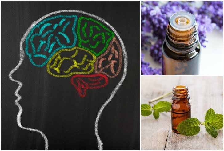 10 Best Essential Oils For Focus, Concentration & Mental Clarity
