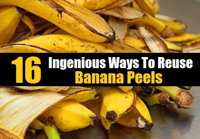 16 Ingenius Ways To Re-Use Banana Peels