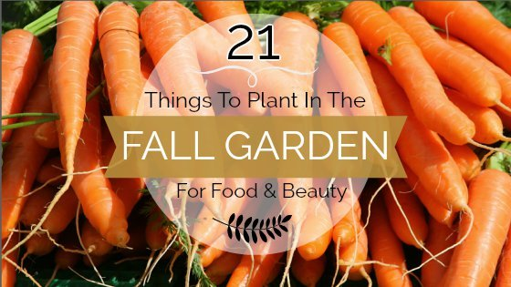 21 Things to Plant in the Fall Garden for Food & Beauty