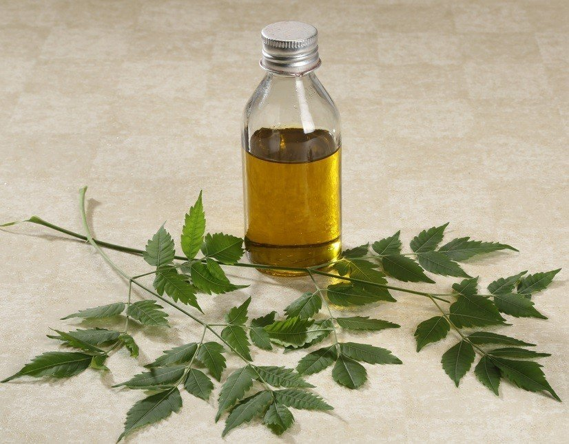 15 Ways To Use Neem Oil For Skin, Hair & In The Home