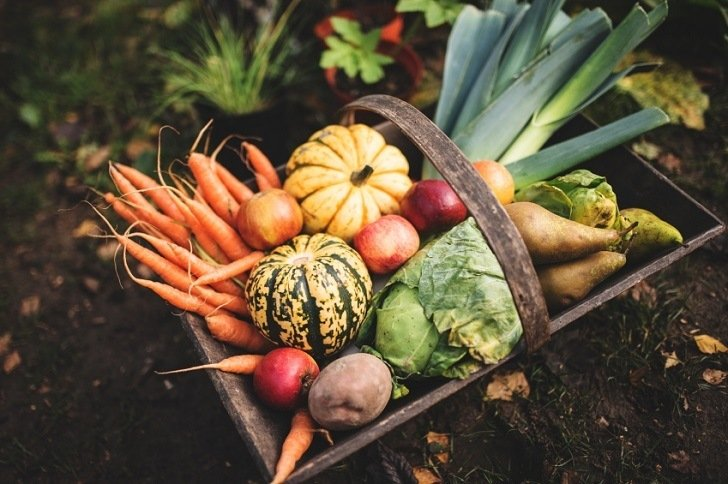 17 Organic Secrets to Turbocharge Your Garden Harvest