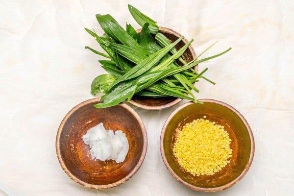 Plantain Salve Ingredients