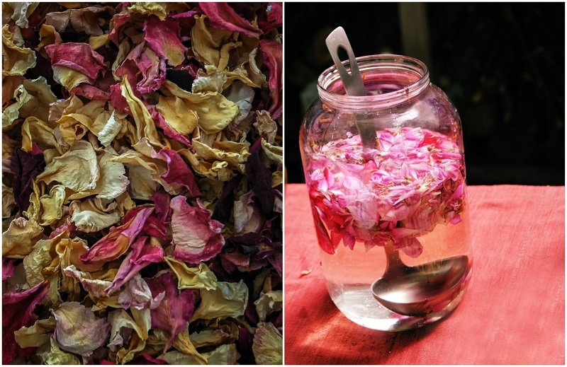 How To Make Your Own Rose Water & 14 Ways to Use It