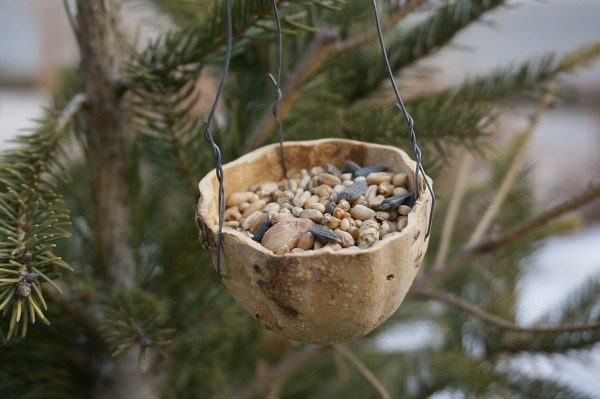 34 Incredible Diy Bird Feeders That Will Fill Your Garden