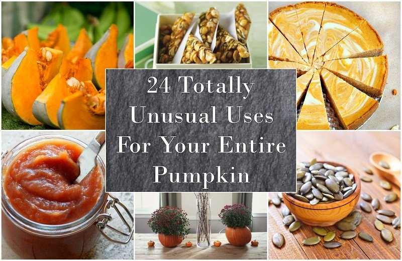 24-totally-unusual-uses-for-your-entire-pumpkin