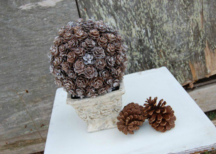 pine-cone-topiary