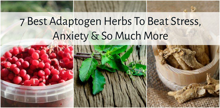 7 Best Adaptogen Herbs To Beat Stress, Anxiety & So Much More