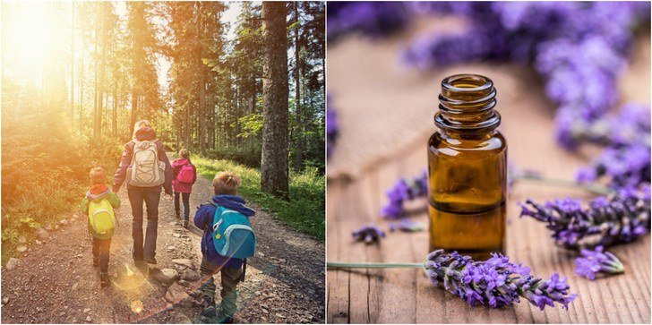 3 Multi-Purpose Essential Oils You Should Always Have In The Great Outdoors