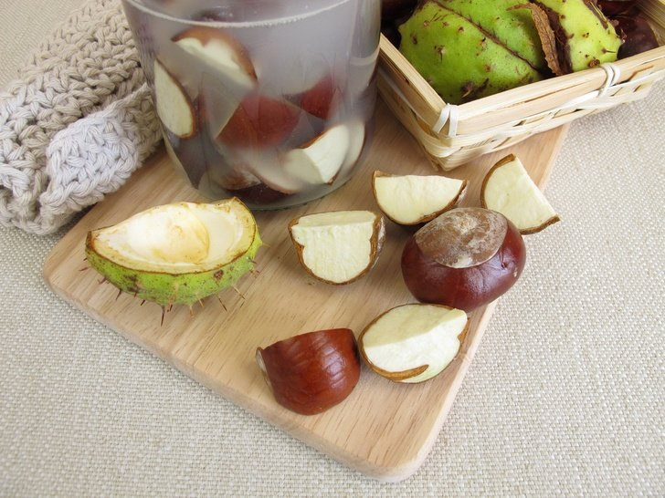 How To Make Totally Free Laundry Soap From Horse Chestnuts (Conkers)