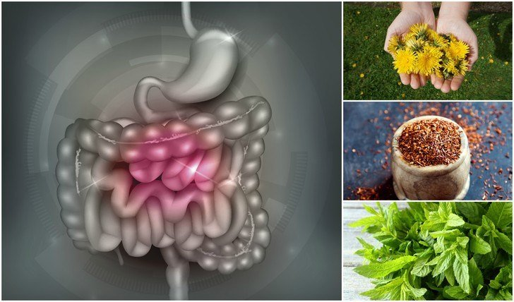 11 Best Natural Laxatives That Quickly Relieve Constipation