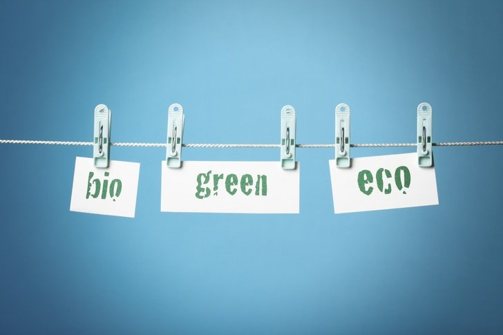 "The Problem Of ""Greenwashing""? & How To Avoid It"
