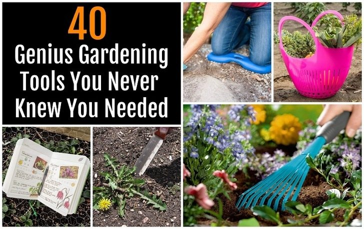 40 Genius Gardening Tools You Never Knew You Needed
