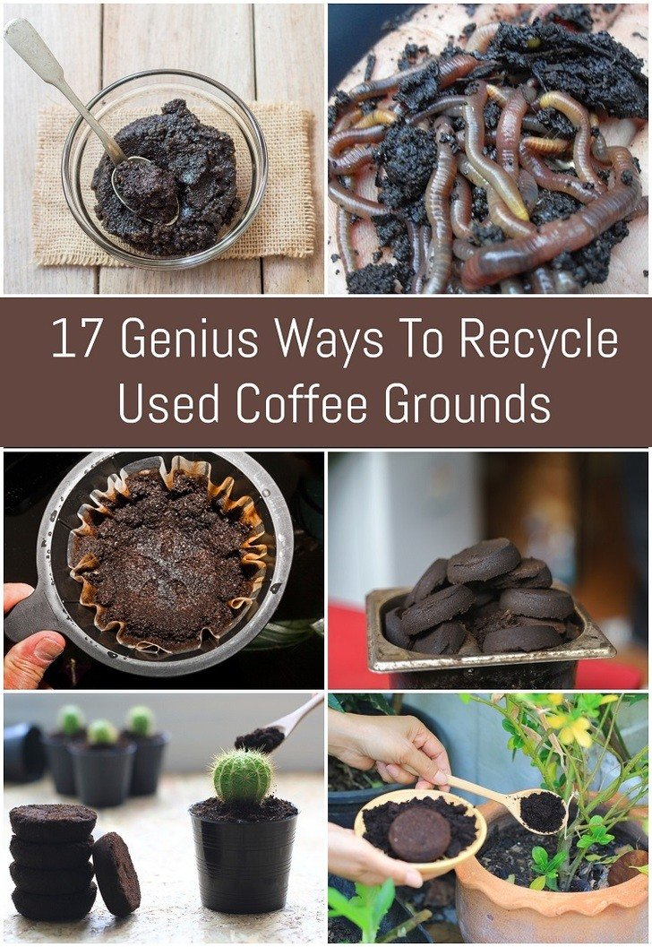 You'll never throw coffee grounds away again after seeing some of the incredible ways you can use your old coffee grounds.