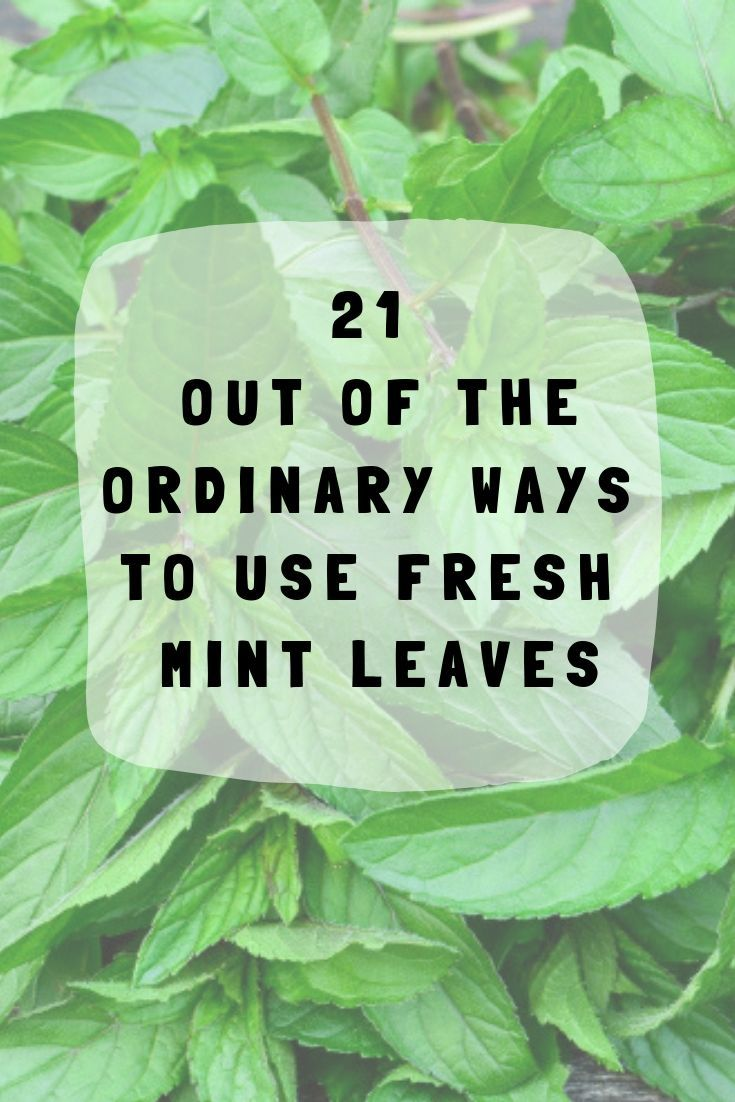 Delightfully fragrant and relatively low maintenance, mint is a joy to grow - earning its place in any kitchen herb garden. Here are 21 wonderful ways to use it.