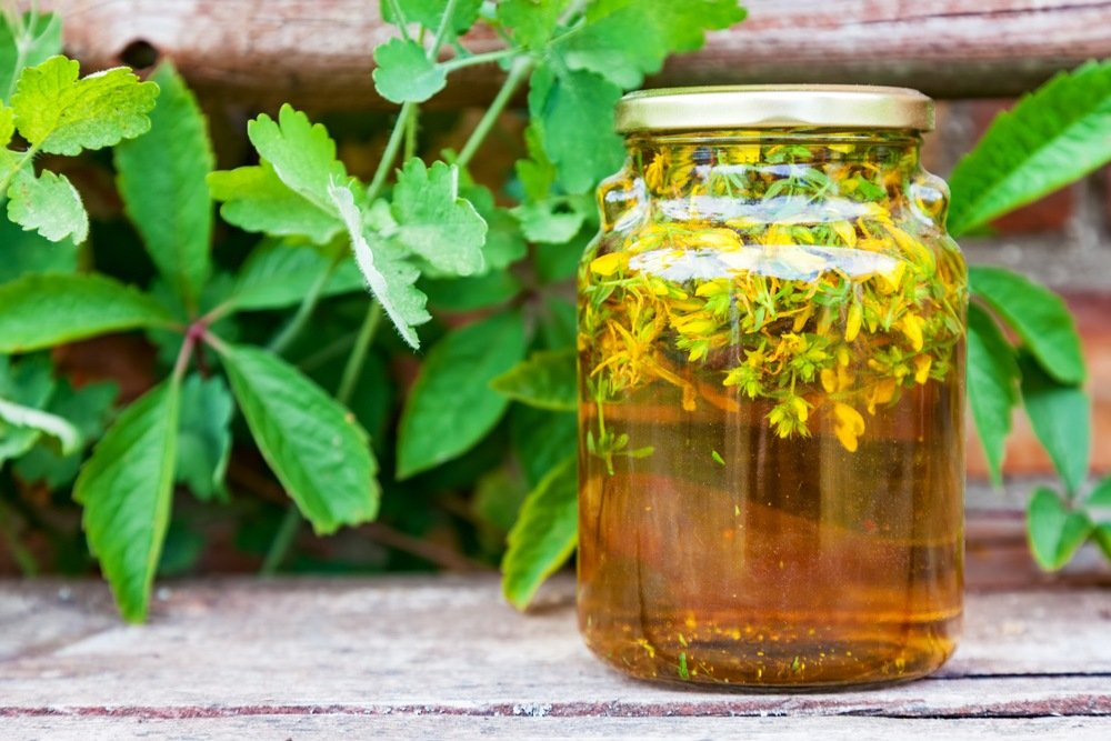 How To Make Herb Infused Oils & 3 Recipes To Try