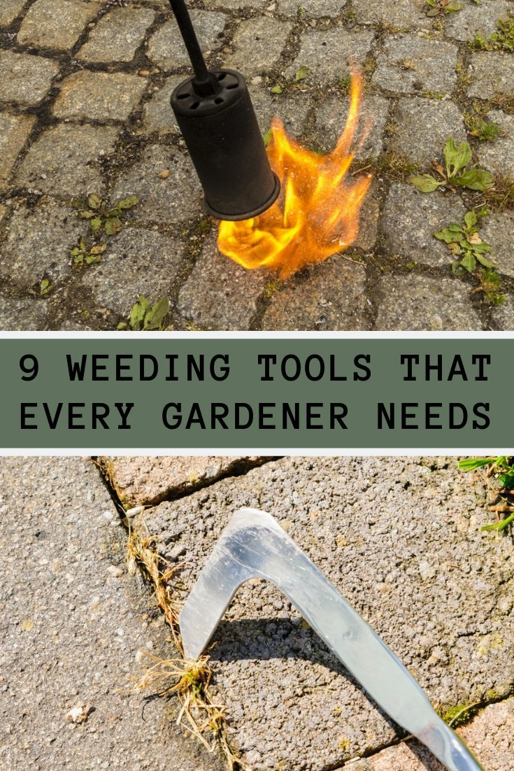 Weeding is an essential step in keeping any garden happy and healthy. Here are 9 tools that will make your life so much easier.